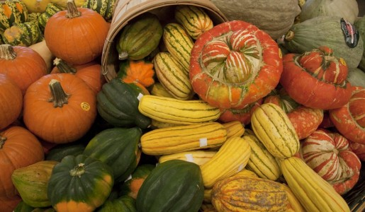 WDIDW_winter_squash_ka_10_t960
